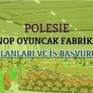 Sinop Oyuncak Fabrikası
