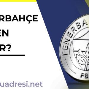 Fenerbahçe token nedir,?