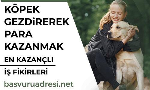 Köpek Gezdirerek Para Kazanmak, Köpek gezdiriciliği nedir?